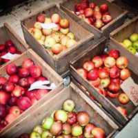Hardeman Orchards Farm Market