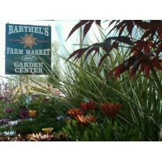 Barthel's Farm