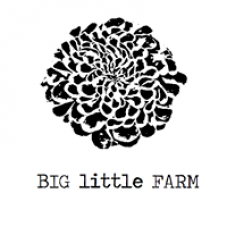 Big Little Farm
