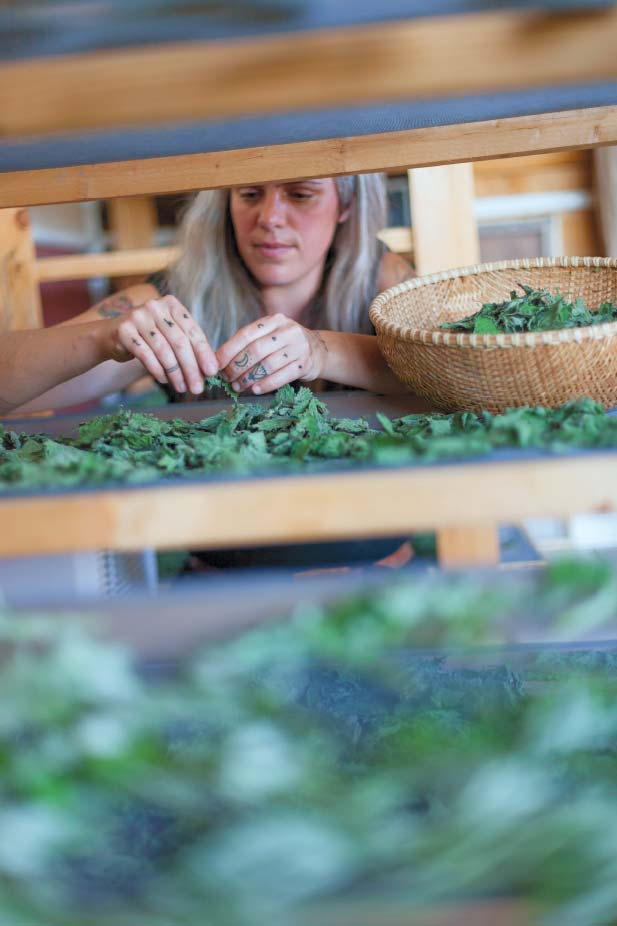 Edible Hudson Valley - Women on the Edge: The Virtues of Herb Farms
